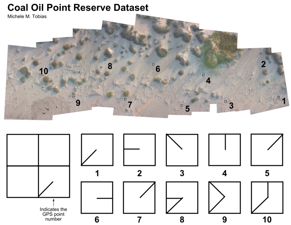 Image of ground control over Coal Oil Point Reserve dataset