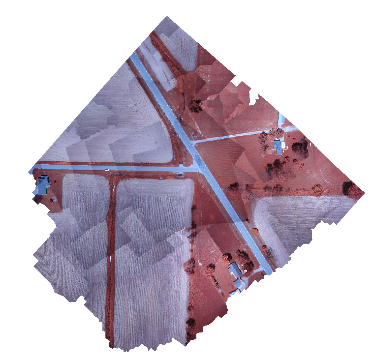 Screen capture of orthophoto from Seneca test dataset