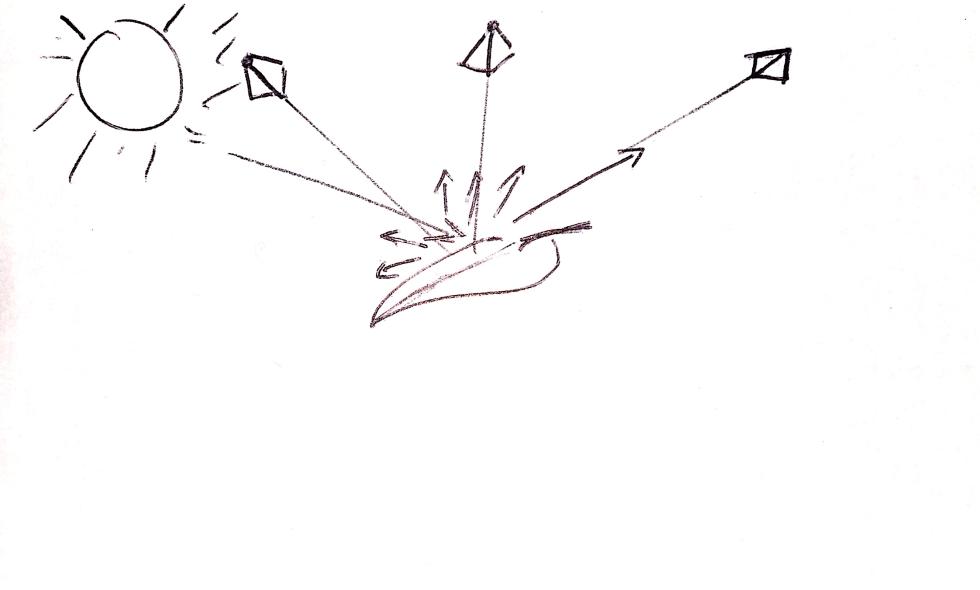 Diagram of reflectance gradient on leaf.