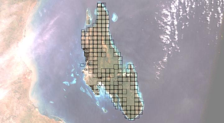 grid_actual.png