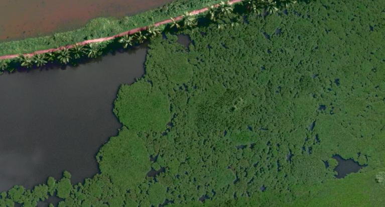 kole_wetland.PNG