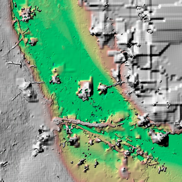 The surface model near the partially blocked section of stream pictured above. Tree trunk and higher banks in gray, stream corridor from deep sections in green to banks in red/orange.